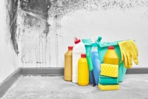 Does Bleach Really Kill Mold? - The idea that bleach can kill mold is a myth! Bleach will kill mold growing on non-porous surfaces like glass, tiles, bathtubs and counter tops. However bleach cannot completely kill mold growing in non-porous materials like drywall and wood. Do not use bleach to kill mold on non-porous materials!