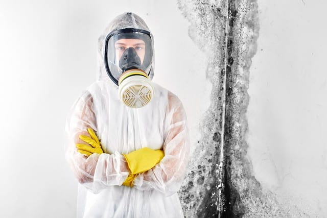 Flood Response Understands Mold Removal!
