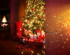 Christmas Tree Fire Safety Tips - Decorating and putting up a Christmas tree is a holiday tradition. Are you aware that your Xmas tree could be a potential fire hazard. This article article explains why and provides you with our top 8 fire prevention tips. Tip 5 is super important!