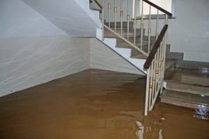 8 Tips To Prevent Mold After A Flood! - There is a direct link between water damage and mold growth. This article explains why. We also provide you with 8 recommendations to prevent a mold outbreak after your home or business floods. Got water damage restoration or mold growth questions? Call Flood Response, (760) 343-3933.