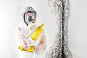 Mold...A Hidden Danger! | Palm Springs CA | Palm Desert CA - The biggest problem posed by mold is that it can be hidden. This is a cause for concern because of the health and structural issues mold poses. In this article, we explain why mold is growing, conditions required to help it grow, and the top 7 areas that you will most likely find mold growing.